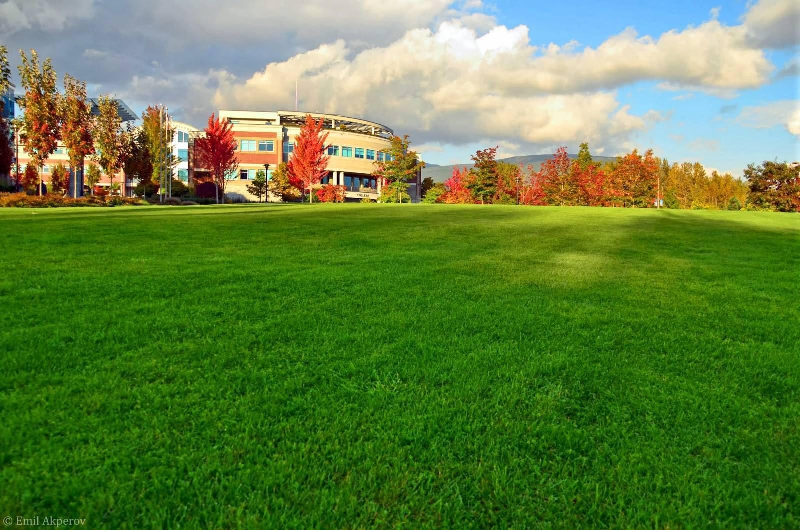 加拿大公立學院 Douglas-College 道格拉斯學院